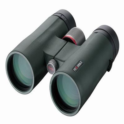 Kowa兴和科娃双筒望远镜SV42-8 8X42