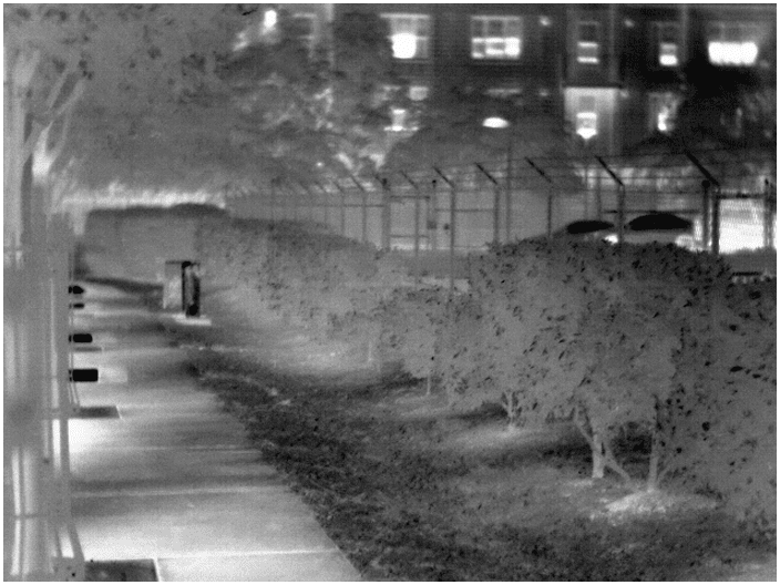 ATN 雷神 THOR-HD 640 5-50×100 热成像瞄准镜 远距离高清热瞄 1